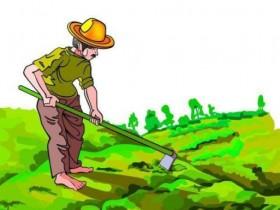 论炒币的种田理论