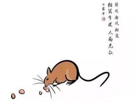 相鼠有皮,人而无仪